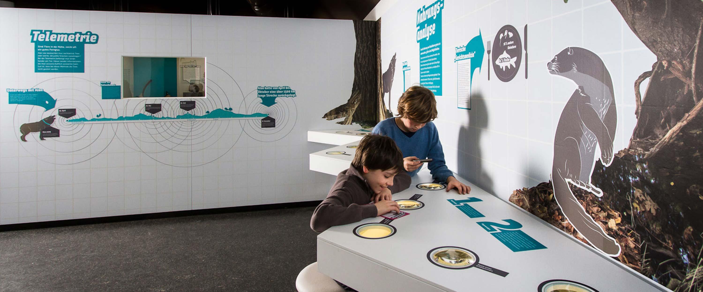 Biosphaerenreservat_Oberlausitz_Ausstellung_Gestaltung_Interaktiv_Kinder